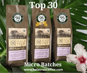 Shop for Top 30 coffee at Hala Tree Kona Coffee
